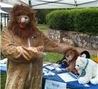 More June 2015 News - Alton's Friendly Lion reunited with lost relative ?!